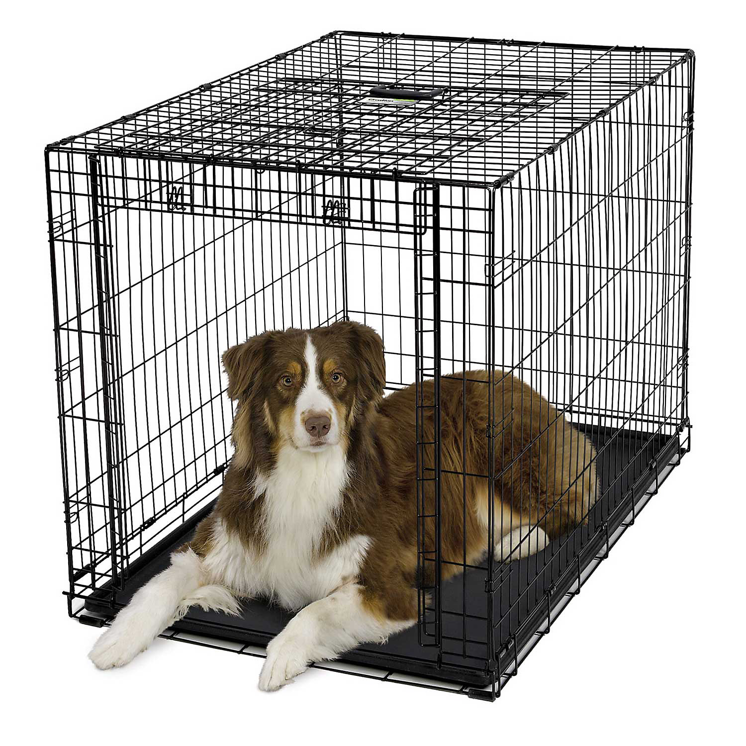 Midwest Ovation Single Door Folding Dog Crate, 44″ L X 29″ W X 30″ H, Large